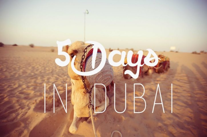 How to Spend 3 Days in Dubai – The Travel Hack